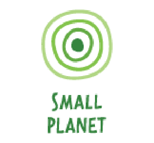small planet consulting logo