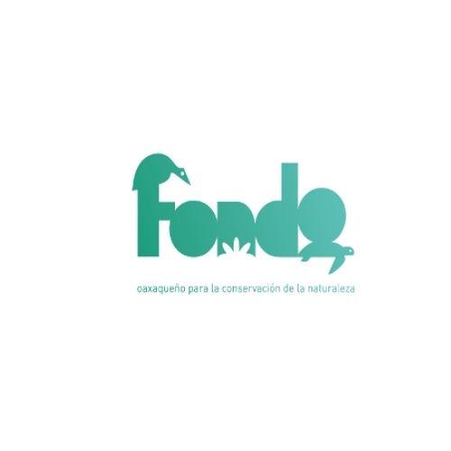 logo fondo mexicano conservacion de la naturaleza